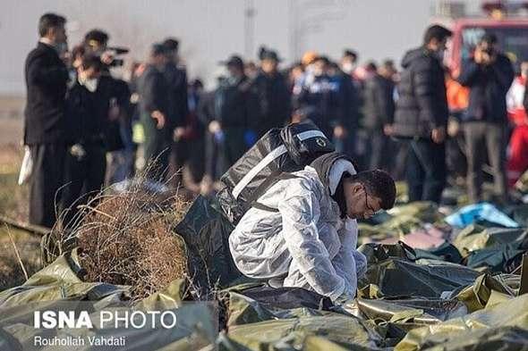 Розслідування катастрофи літака МАУ в Ірані триває - Авіакатастрофа в Ірані: керівник групи українських судмедекспертів розповів деталі розслідування