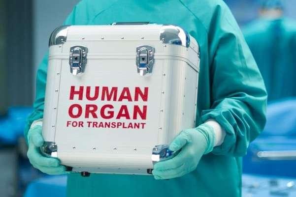 Трохи більше 5 тис людей в Україні щороку потребують органної трансплантації та трансплантації кісткового мозку - В Україні лікують мертвих і не рятують живих. Нові правила пересадки органів: що тепер зміниться