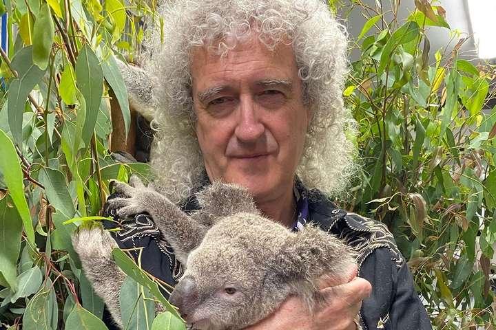 <p>Судя по реакции, коала &mdash; не фанат рок-музыки</p> <div></div> - Гитарист Queen Брайан Мэй сыграл на гитаре для спасенной от пожаров коалы (фото)