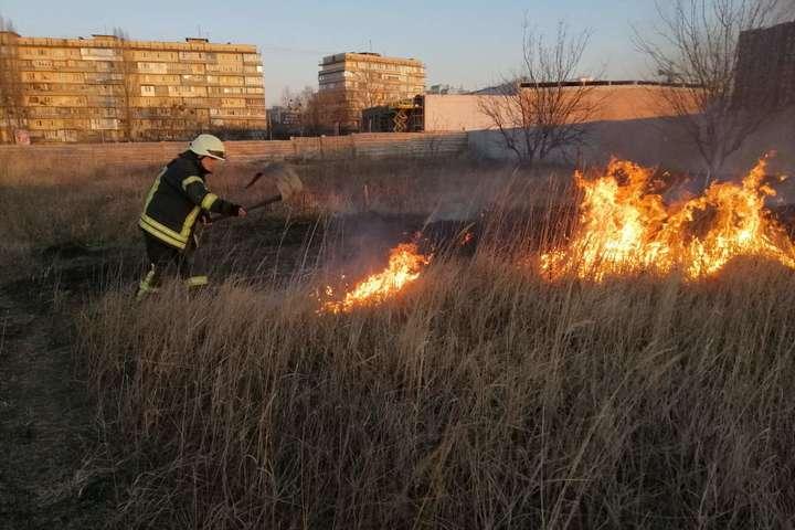 Загорання трав'яного настилу у Києво-Святошинському районі - Під Києвом масово горять чагарники і смітники (фото, відео)