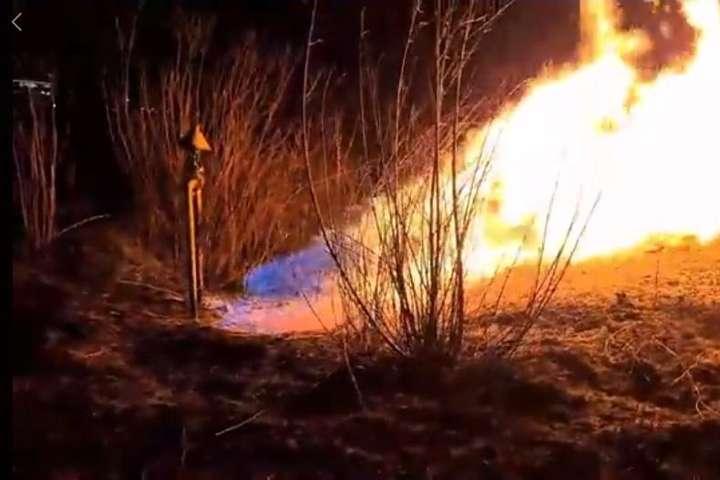 На Львівщині через підпал сухої трави загорівся газопровід: відео