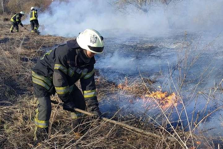 Рятувальники ліквідовують загорання сухої трави та чагарників - У Києві масові пожежі в екосистемах: за тиждень вигоріло понад 27 га (фото)