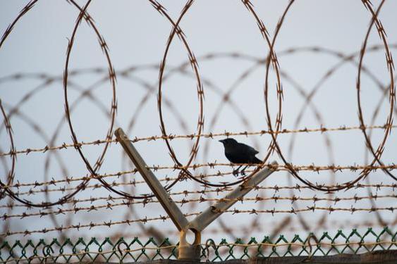 У Франції через коронавірус звільнили понад 6000 в'язнів