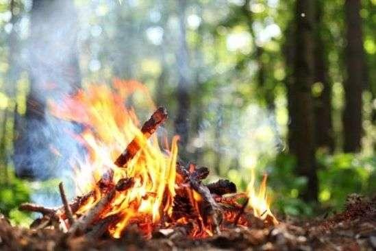Виїзд на природу сьогодні може закічитися пожежею через надзвичайно спекотне повітря - В Україні оголошено надзвичайний рівень пожежної небезпеки