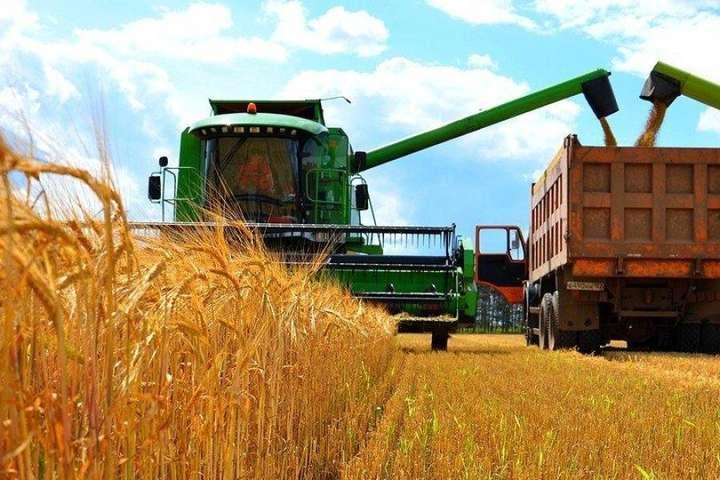 Жнива-2020: аграрії вже зібрали майже 1,13 млн тонн зерна - Главком