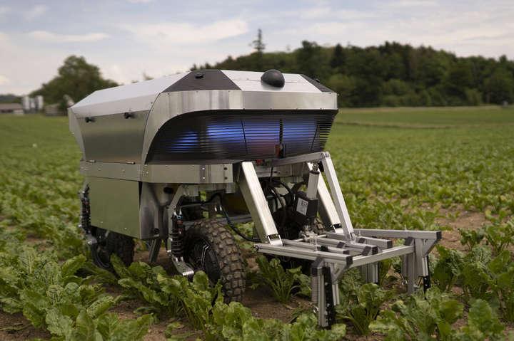 Робот «Розі» може боротися з бур'янами без будь-якої хімії і, таким чином, захищати грунт і грунтові води - Агроробот на сонячній енергії почне допомогати фермерам