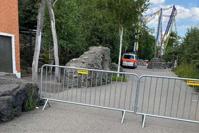 Слідчі з'ясовують, як стався трагічний інцидент і чому співробітниця зоопарку виявилася в одному приміщенні з хижаком - У Швейцарії співробітниця зоопарку померла після нападу тигриці