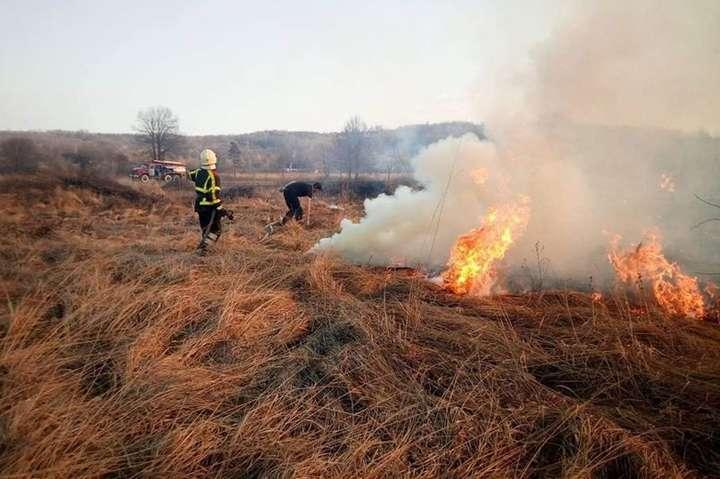 Суха спекотна погода сприяє виникненню пожеж в екосистемах - В Україні оголошено найвищий рівень пожежної небезпеки