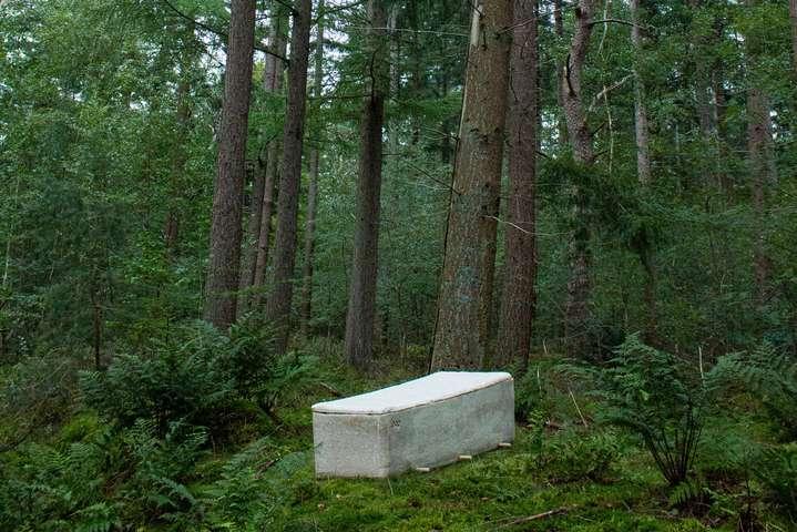 Фото:twitter.com/acourseindying - Нидерландский ученый запустил производство «живых гробов» из грибов (фото)
