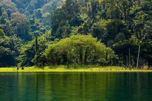Національний парк Таїланду надсилає туристам назад їхнє сміття