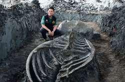 Фото: — <p>Скелет кита знайшли неподалік від Бангкока, він майже повністю зберігся</p>