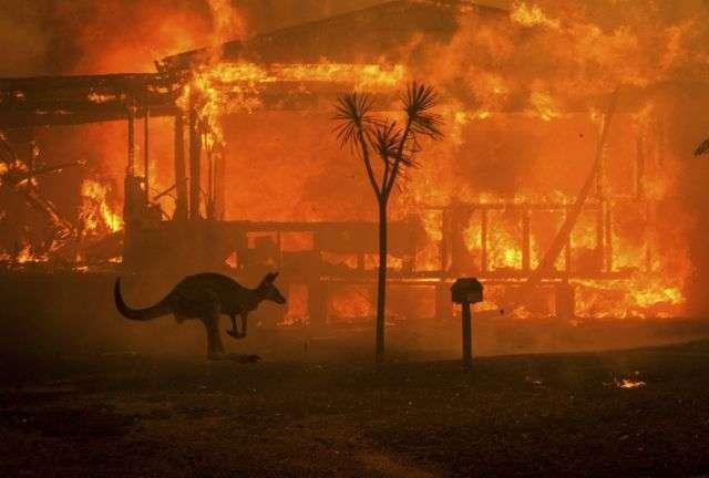 Вогонь знищив кілька десятків будівель — Австралія знову у вогні: на заході горять ліси
