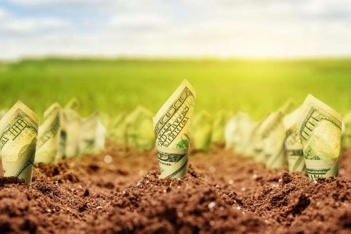 Сьогодні оренда землі в Україні обходиться не менш $150 за гектар і ця цифра постійно зростає - Вигідніше за нерухомість. Урядовець дав пораду українцям, які не знають, куди вкласти гроші
