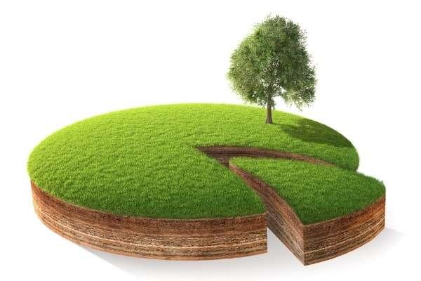 Хто не встигне оформити право власності, може втратити земельний пай. Чиновники дали інструкцію