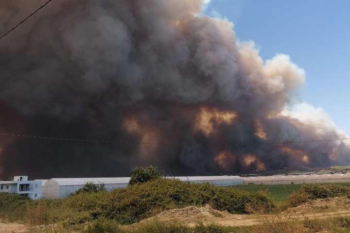 Активними залишаються20 пожеж всеми провінціях Туреччини - У Туреччині зросла кількість жертв лісових пожеж