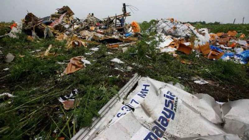 Уламки малайзійського Boeing рейсу MH17. Донбас, 2014 рік