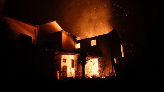 Через лісову пожежу вПортугалії загинули 19 осіб