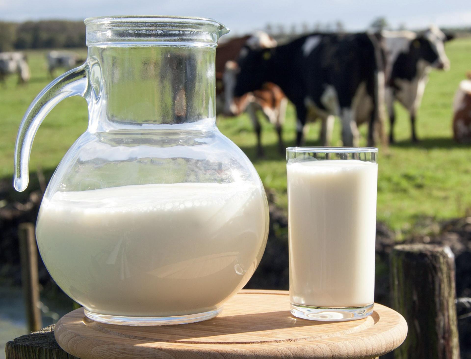 моб все о молоке и молочных продуктах фото картинки клиентов