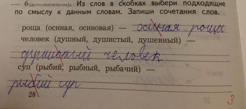Медведевым, сочинения детей смешные картинки