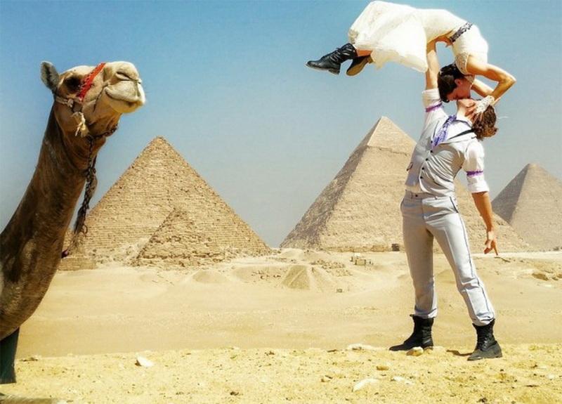 Египет картинки смешные, учителям