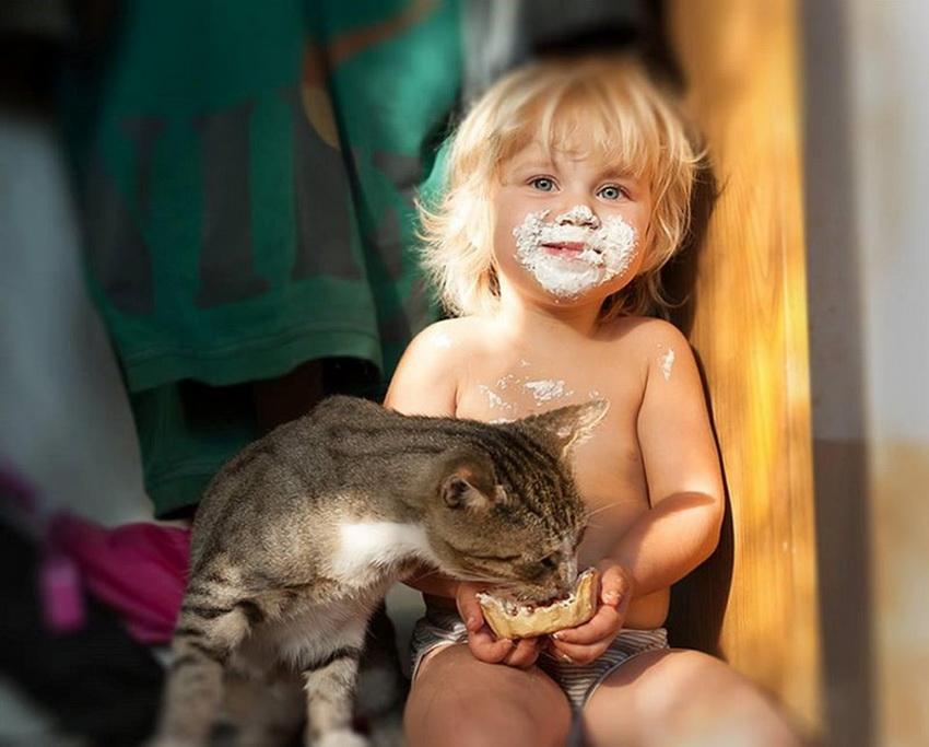 Смешные до слез картинки с котами и младенцами, открытку
