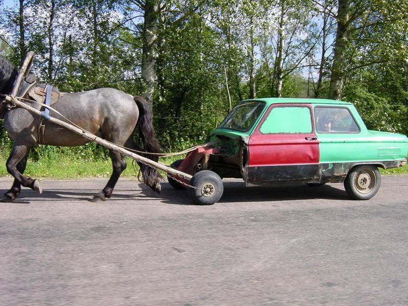 Смешные картинки про лошадиную силу, кружку