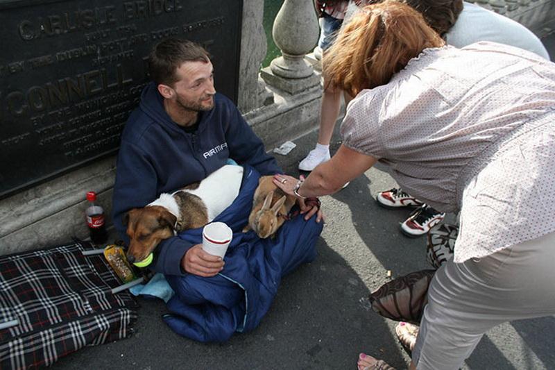 картинки нищета и собаки этом законченный стильный