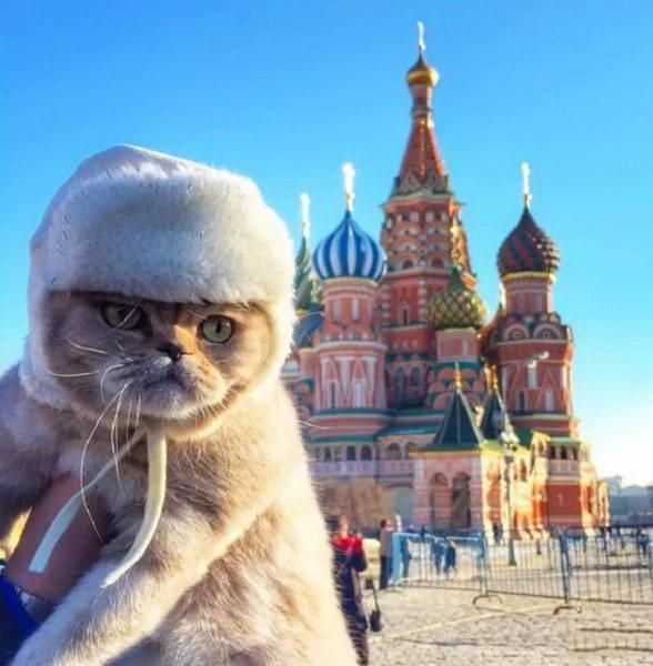 Москва картинки смешные