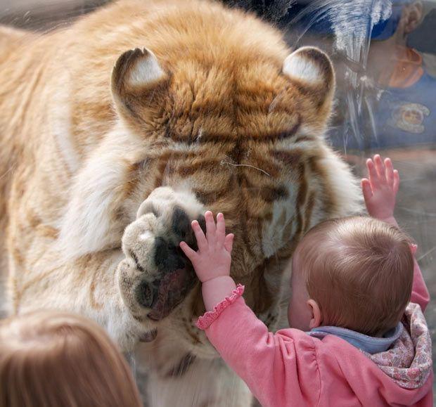 прикольные картинки на тему доброта для
