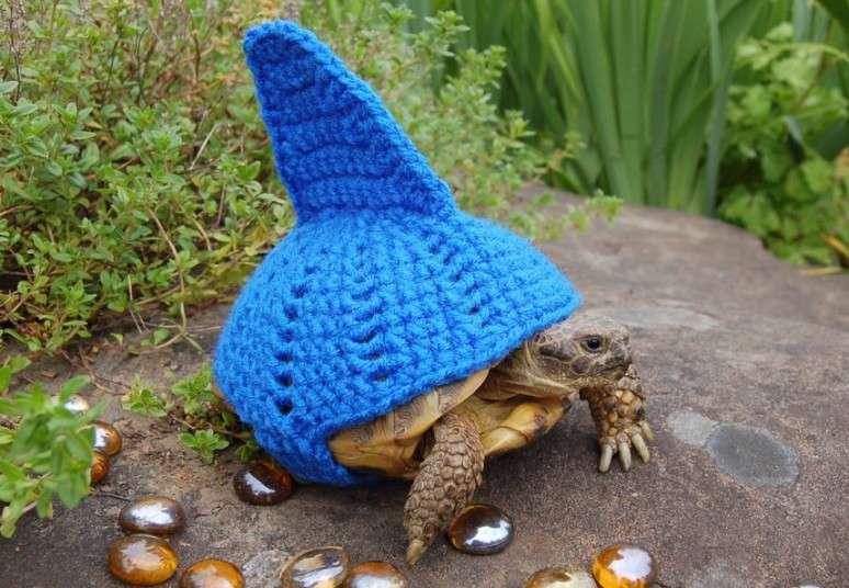 Черепахи едят своими руками