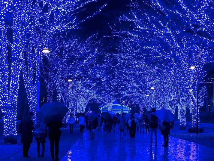 Зимняя иллюминация в Токио, Япония.
