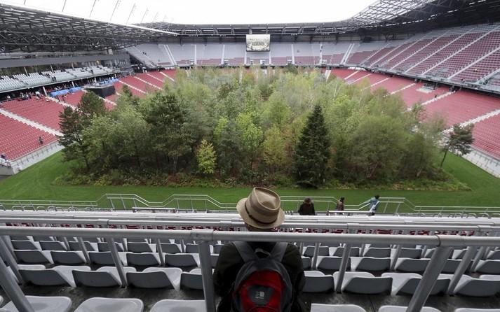 Художник превратил огромный стадион в густой лес: фото масштабной инсталляции