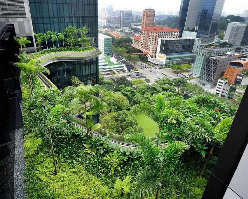 Уникальный сад на фасаде отеля в Сингапуре (ФОТО)
