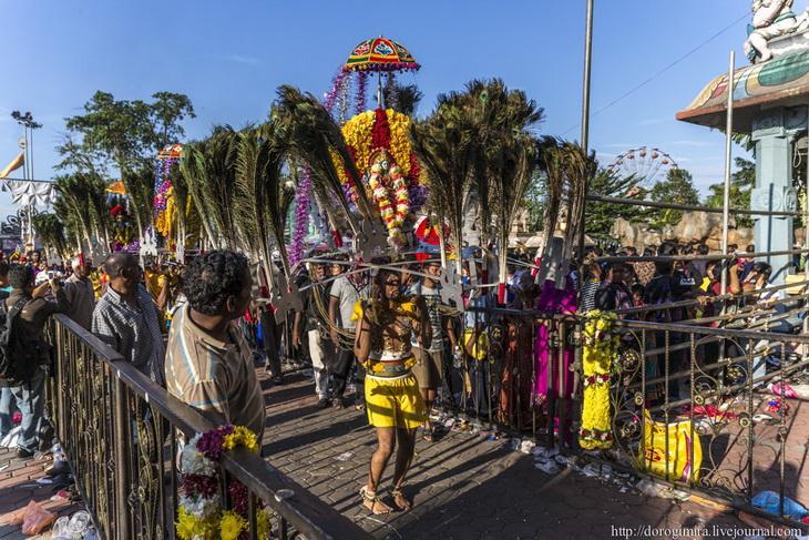 Как в малайзии празднуют тайпусам