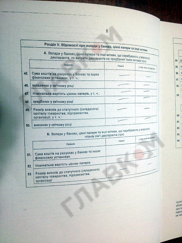 Лидер Автомайдана, назначенный министром, показал свою декларацию (ДОКУМЕНТ)