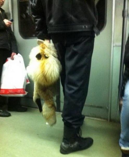 Безумные пассажиры российского метро (фото 3)