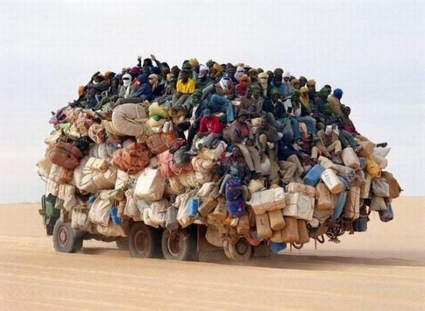 Такое возможно только в Африке (фото 1)