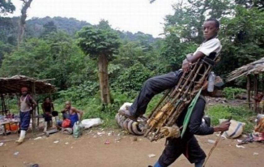 Такое возможно только в Африке (фото 4)