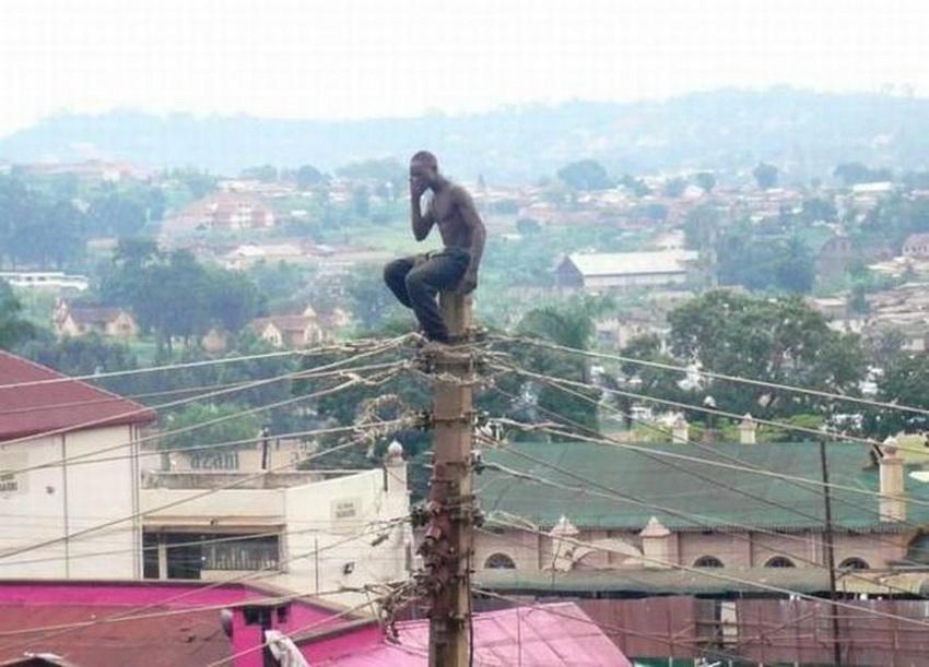 Такое возможно только в Африке (фото 13)