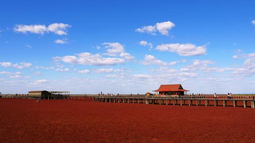 Красный пляж паньцзинь фото