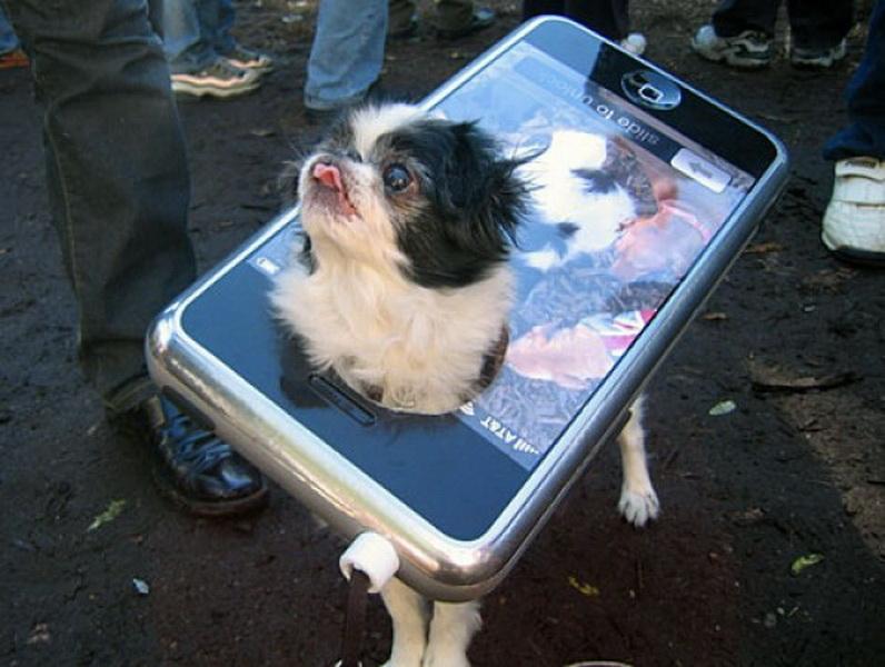 Собака-айфон