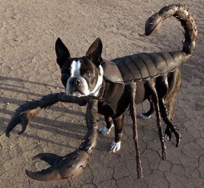 Собака-скорпион